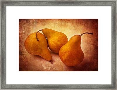 Three Gold Pears Framed Print