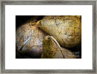Three Gourds Framed Print by Dave Gordon