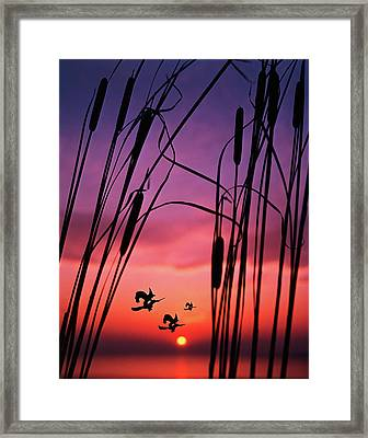 Three Halloween Witches Riding Framed Print