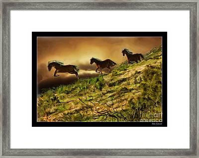 Three Horse's On The Run Framed Print by Blake Richards