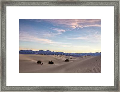 Three In The Sand Framed Print