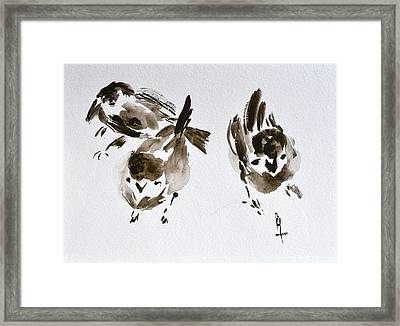 Three Little Birds Perch By My Doorstep Framed Print by Beverley Harper Tinsley