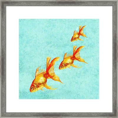 Three Little Fishes Framed Print by Jane Schnetlage