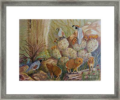 Three Little Javelinas Framed Print