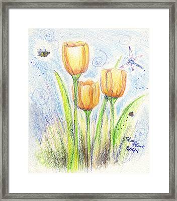 Three Little Tulips Framed Print