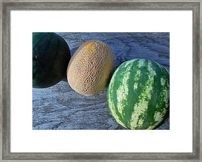 Three Melon Framed Print