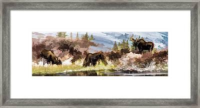 Three Moose Framed Print
