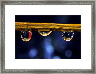 Three Musketeers Framed Print