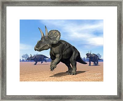 Three Nedoceratops In The Desert Framed Print by Elena Duvernay
