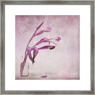 Three Of Us Framed Print by Priska Wettstein