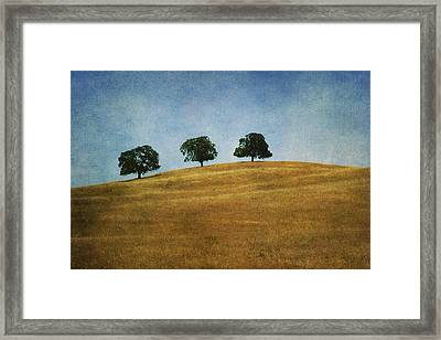 Three On A Hill Framed Print by Eleanor Caputo