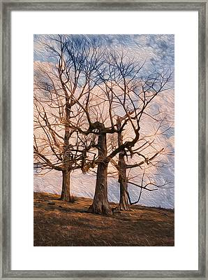 Three On The Hill - Color Framed Print