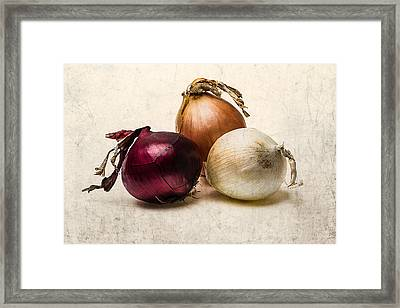 Three Onions - 1 Framed Print by Alexander Senin