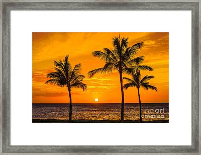 Three Palms Golden Sunset In Hawaii Framed Print
