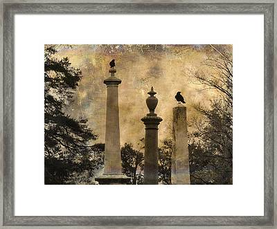 Three Perches Two Crows Framed Print by Gothicrow Images