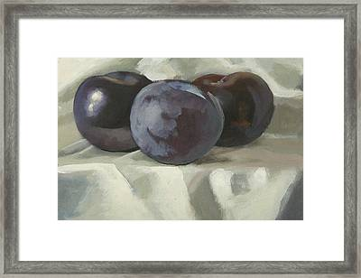 Three Plums Framed Print by Peter Orrock