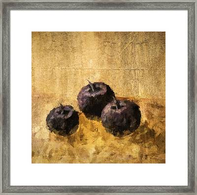 Three Plums Still Life Framed Print by Michelle Calkins