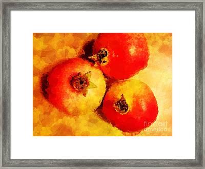 Three Pomegranates Framed Print by Mary Machare
