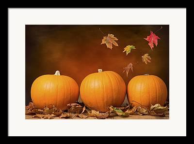 Orange Pumpkin Framed Prints