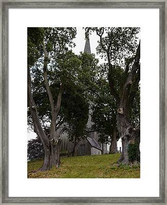 Three Relics Framed Print by Winifred Butler