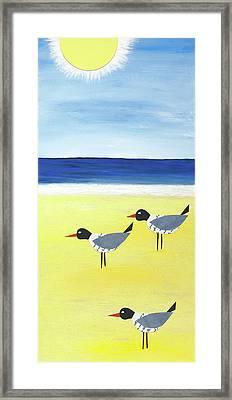 Three Seagulls On The Beach Framed Print by Jennifer Peck