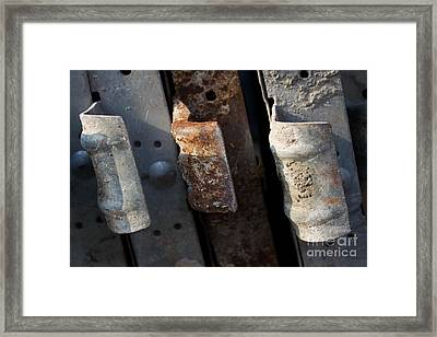 Three Shades Of Rust Framed Print