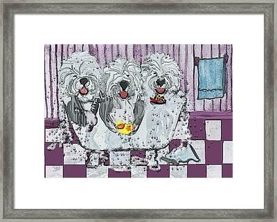 Three Sheepdogs In A Tub Framed Print