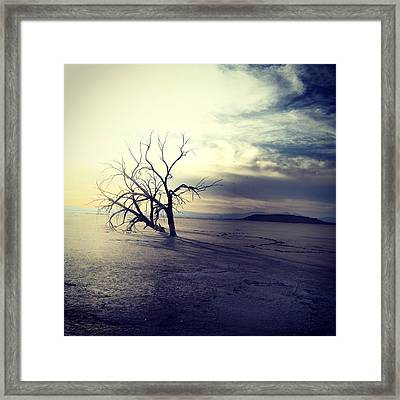 Three Sisters #2 Framed Print