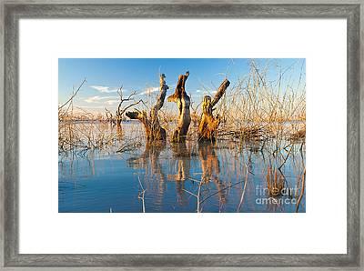 Three Sisters Framed Print by Bill  Robinson