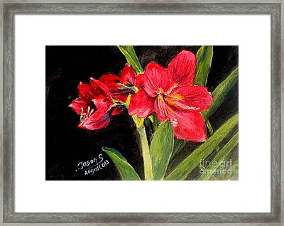 Three Stalks Of Lilies Blooming Framed Print