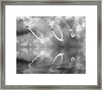 Three Steel Bird Framed Print