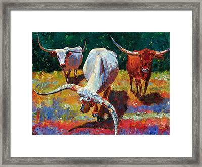 Three Texas Longhorns Framed Print by Debra Hurd