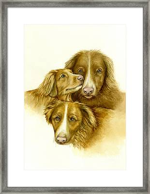 Three Toller Dogs Framed Print by Nan Wright