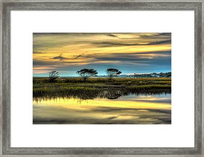 Three Tree Sunset Framed Print