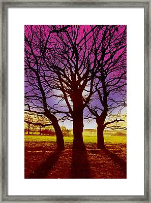 Framed Print featuring the digital art Three Trees by David Davies