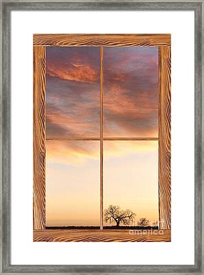 Three Trees Sunrise Barn Wood Picture Window Frame View Framed Print by James BO  Insogna