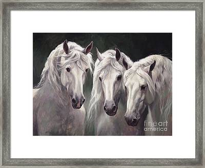 Three White Horses Framed Print by Laurie Hein