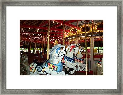 Framed Print featuring the photograph Three White Ponies by Barbara McDevitt