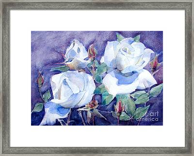 White Roses With Red Buds On Blue Field Framed Print