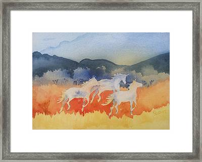 Three Wild Horses Framed Print