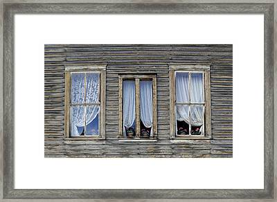 Three Windows Framed Print by Geraldine Alexander