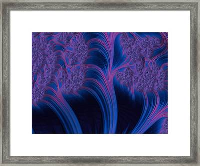 Threes Of Paradise Framed Print