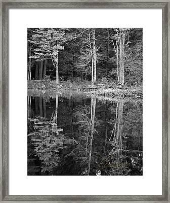 Framed Print featuring the photograph Threes by Tom Cameron