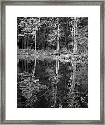 Threes Framed Print by Tom Cameron