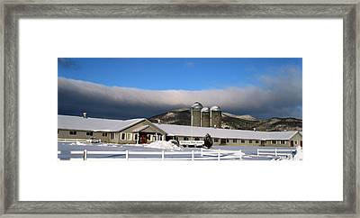 Threesome 2 Framed Print by Will Boutin Photos