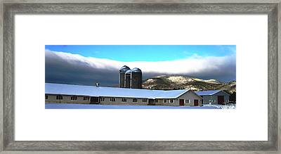 Threesome 3 Framed Print by Will Boutin Photos
