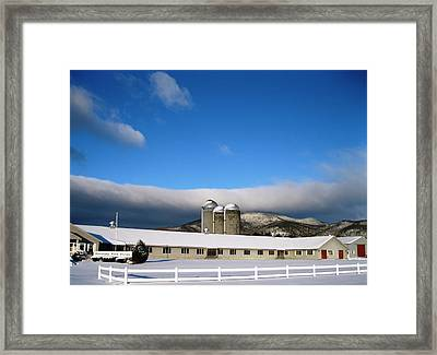 Threesome Framed Print by Will Boutin Photos