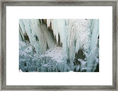 Thrill And Chillin Framed Print