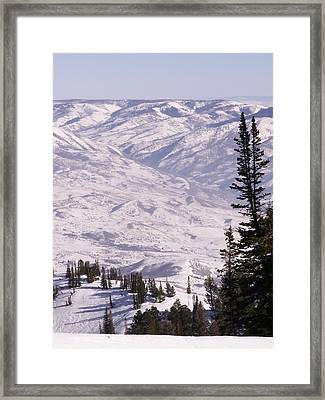Thrill Ride Framed Print