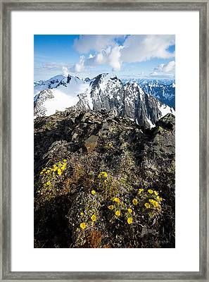 Thriving In Adversity Framed Print